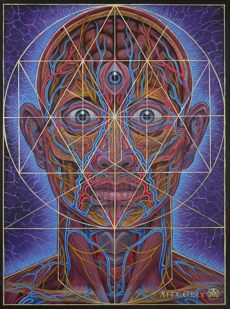 Human Geometry by Alex Grey, 2007
